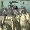 Venice Suite – Penguins